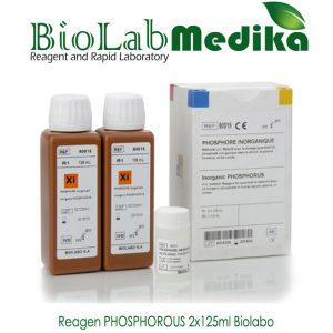 Reagen PHOSPHOROUS 2x125ml Biolabo
